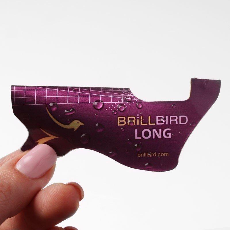 Long nail form brillbird